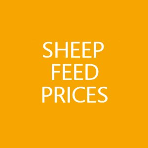 Sheep feed prices from Toomers, Swindon, Wiltshire